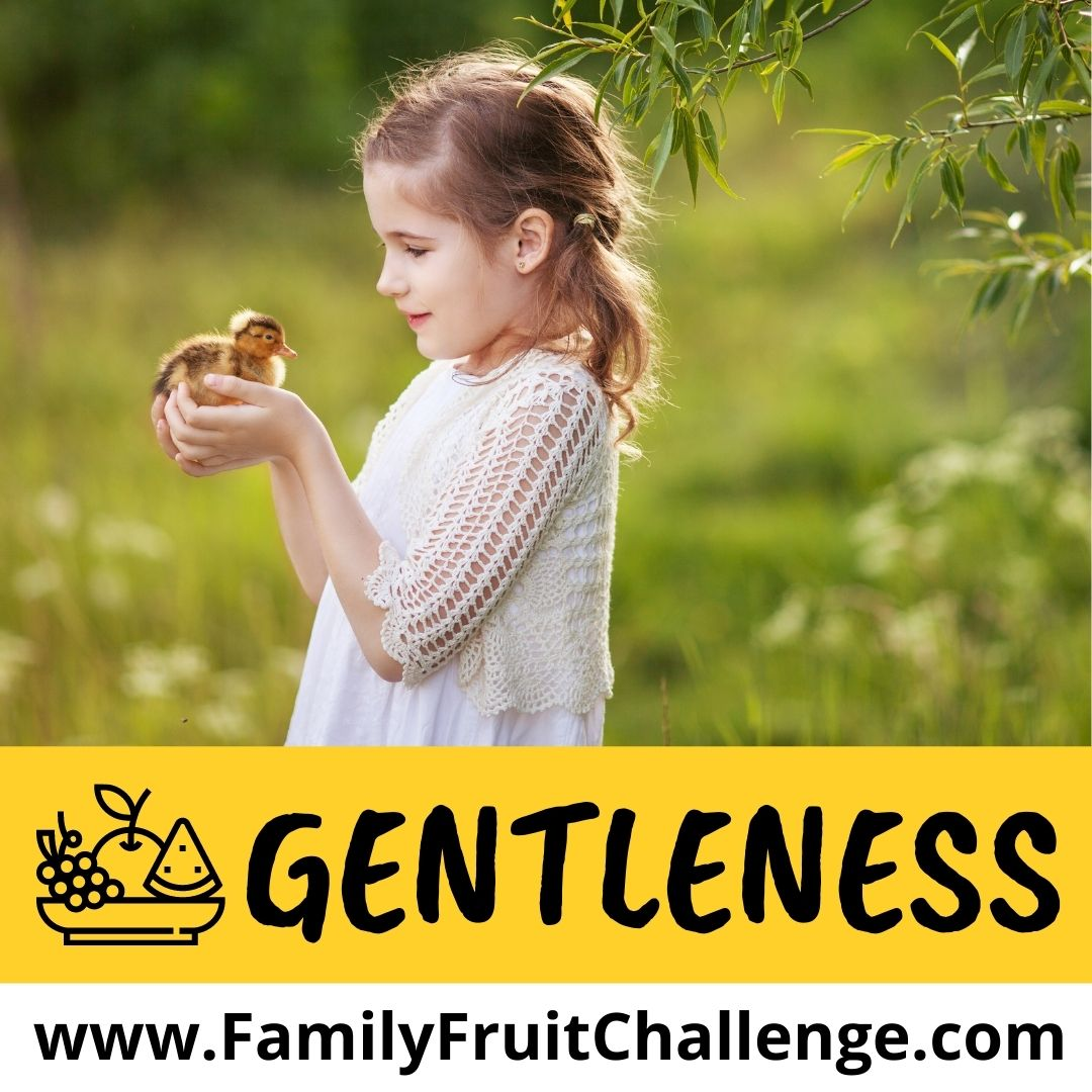 how to teach your kids about gentleness
